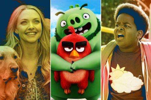 New Movies on Demand: 'Good Boys,' 'Art of Racing in the Rain,' 'Angry Birds 2,' and More