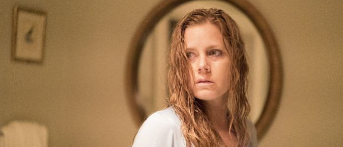 Amy Adams Thriller 'The Woman in the Window' Sets May 2021 Release Date on Netflix