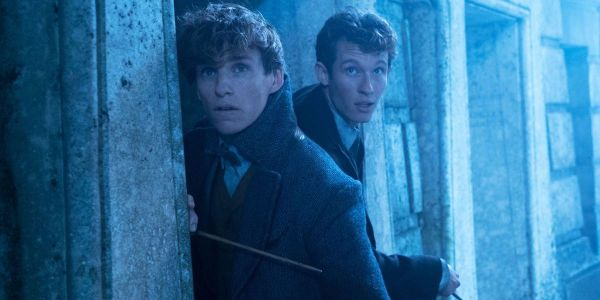 Fantastic Beasts 3 Just Teased Awesome Newt Scamandar And Gellert Grindelwald Battle And I'm All In