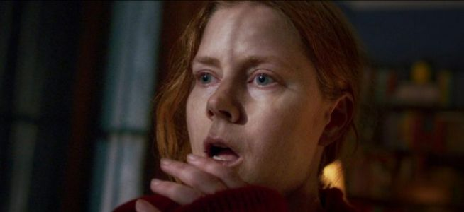 'The Woman in the Window', Starring Amy Adams, Likely Heading Straight to Netflix