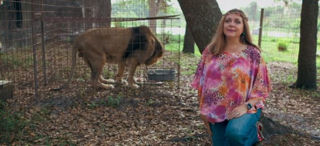 'Tiger King' Inspires Sheriff to Seek New Leads in the Case of Carole Baskin's Missing Husband