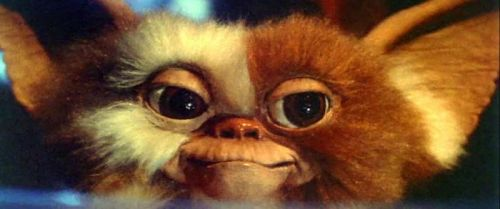 'Gremlins' Prequel Concept Art Revealed, Featuring a Younger Gizmo