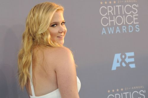 Amy Schumer Adapting Novel 'Mercy House' For CBS All Access