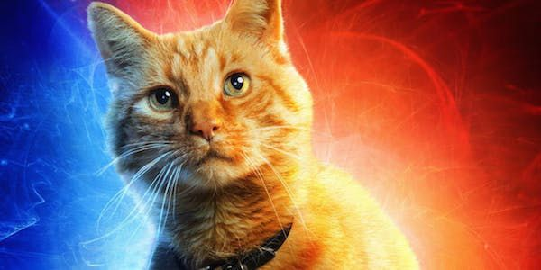 Why Captain Marvel Changed Goose The Cat's Name From Chewie