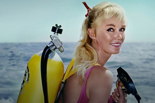 Stream It Or Skip It: 'Playing With Sharks' On Disney+, About The Daring Female Diver Who Has Dedicated Her Life To Sharks